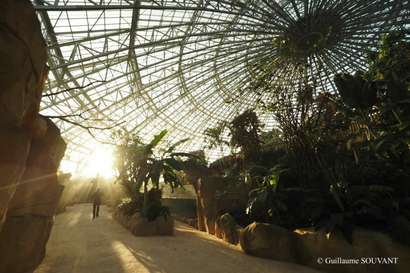 FRANCE-ANIMAL-ZOOPARC-BIODOME